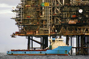 """Offshore supply ship """"Maersk Forwarder"""" unloading containers at Miller B oil/gas platform in the North Sea. Autumn 2006.  -  Philip Stephen"""
