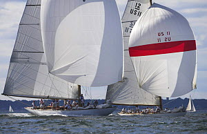 Two classic wooden 12 Meters race downwind under spinnakers during the 12 Metre World's Competition 2005, Newport, Rhode Island, USA.  -  Onne van der Wal