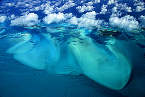 Aerial view, with clouds, of Exuma, part of the chain of 365 islands that form the Bahamas.  -  Onne van der Wal