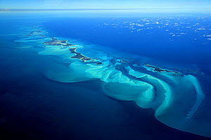Aerial view of the islands of Exuma, part of the chain of 365 islands that form the Bahamas.  -  Onne van der Wal
