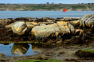 Lone sailing boat with red sails on Clifden Bay on the coast of Connemara, County Galway, Ireland.  ^^^A popular area of the coast for many activities, it has over 5,000 years of living history.  -  Marc Robillard