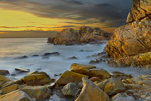 Rocky shoreline of Tr�gor, on the Finist�re coast, Brittany, France  -  Marc Robillard