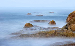 Rocky shoreline of Tr�gor, on the Finist�re coast, Brittany, France.  -  Marc Robillard