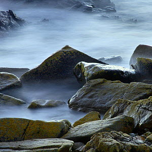 Granite rocks of Armor's coast in Brittany, France, near Perros Guirec.  -  Marc Robillard