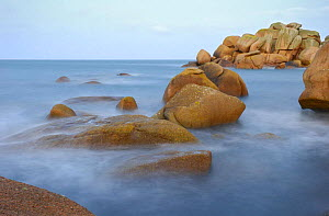 Pink Granite rocks on the Tr�gor Coastline, Armor's coast, Ploumanac'h, near Perros Guirec, Brittany, France. November.  -  Marc Robillard