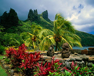 Lush vegetation and traditional statues in the Marquesas Islands, French Polynesia.  -  Onne van der Wal