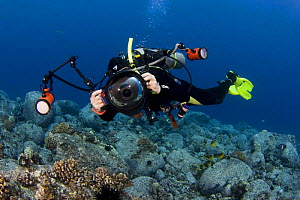 Diver on reef with his digital SLR camera in an underwater housing with twin strobes, Kona Coast, Hawaii. Model released.  -  David Fleetham