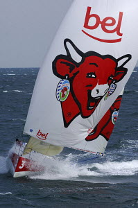 """""""Groupe Bel"""" with the laughing cow on the mainsail, skippered by Pietro D'ali and Kito De Pavant, at the start of the 32ft class in the Figaro Transat AG2R 2006, Concarneau, France. 4th April 2006. Fo... - Yvan Zedda"""
