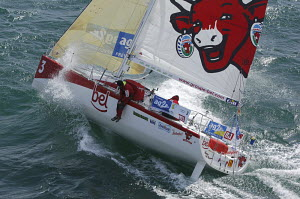 """""""Groupe Bel"""" with the laughing cow on the mainsail, skippered by Pietro D'ali and Kito De Pavant who are sitting on the gunwales, at the start of the 32ft class in the Figaro Transat AG2R 2006, Concar... - Yvan Zedda"""
