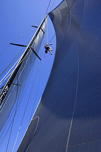 """A crew member of """"Maximus"""" going up the rigging to check out the sails during the 2006 Newport to Bermuda Race. Model and Property Released. - Onne van der Wal"""