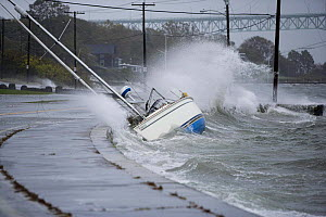 An October 2006 storm freeing yachts from their moorings to run ashore and be pounded by waves in Jamestown, Rhode Island, USA.  -  Onne van der Wal