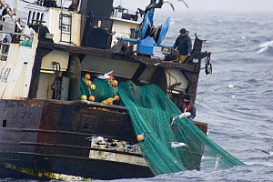 Fishermen shooting the net over the stern of fishing trawler ^Carisanne^ in the North Sea. April 2007.^^^They will shoot and haul their net every 4 hours continuously for up to 9 days then return to p... - Philip Stephen