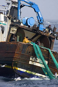 """Crewmen repairing a torn net on the stern of the fishing traweler """"Carisanne"""" in the North Sea.April 2007.  -  Philip Stephen"""