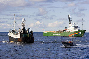 """Greenpeace activists disrupting fishing operations on fishing trawler """"Carisanne"""", 40 miles east of the Shetland Isle of Unst, Scotland.  -  Philip Stephen"""