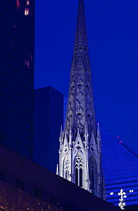 Eerily floodlit St. Patrick Cathedral, New York City.  -  Angelo Giampiccolo