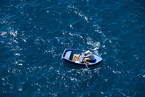 Aerial view of a man rowing a small boat, Dubrovnik, Croatia.  -  Barry Bland