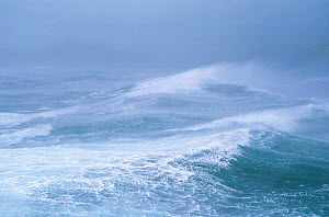 Stormy sea. Antarctica - PETER SCOONES