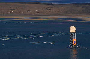Scaffold tower for filming Beluga whales Someset Island Canadian arctic - Sue Flood