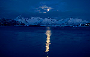 Moon over landscape Tysfjord, Norway  -  Hugh Pearson