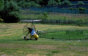 Researcher In crane costume with Whooping crane chicks. Maryland USA Operation - imprinting chicks so they will follow microlite south for winter - Mark Payne-Gill