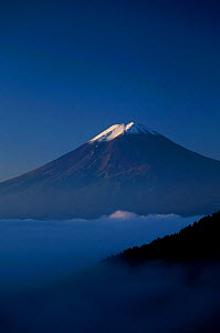 Mount Fuji rising above cloud level Kawaguchi Ko Japan  -  David Pike