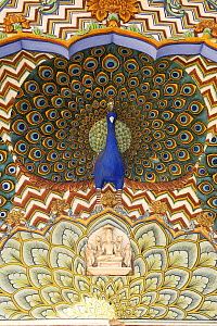 Decorative wall painting with sculptured peacocks at the Peacock Gate in the Pitam Niwas Chowk courtyard of the City Palace, Jaipur, Rajasthan, India  -  Winfried Wisniewski