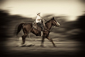 Young cowboy practicing roping, Hebbronville, Texas  -  Jasper Doest