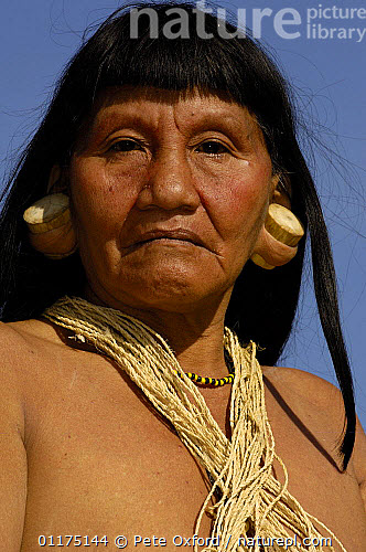 Nature Picture Library - Huaorani indian woman with balsa ear plugs