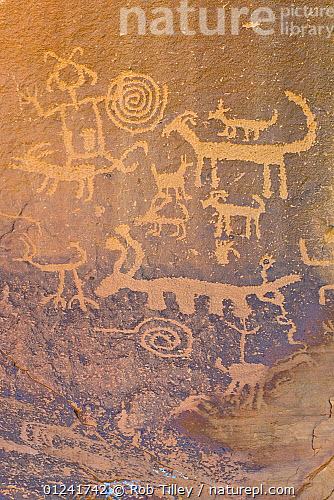 Rock engravings of the native american Pueblo people, Chaco Culture  National Historical Park, New Mexico, USA, February 2009 8c73a39a23b0