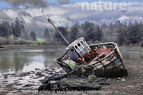 Nature picture library wreck of an old wooden fishing boat on the wreck of an old wooden fishing boat on the shingle at benodet brittany france publicscrutiny Image collections