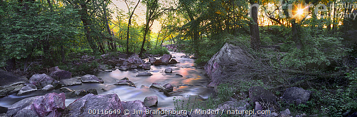 Purple rock is catlinite or pipestone used by Native Americans to make the peace pipe, Pipestone Creek, Pipestone National Monument, Minnesota, Catlinite, Color Image, Creek, Day, Deciduous, Dusk, ILCP, Landscape, Long Exposure, Minnesota, Nobody, Outdoors, Panoramic, Photography, Pipestone Creek, Pipestone National Monument, Purple, Sacred, Sunrise, Sunset, USA, Water, Wide-angle Lens,Minnesota, USA, Jim Brandenburg