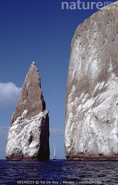 Kicker Rock an old eroded tufa formation with sailboat, Galapagos Islands, Ecuador  ,  Color Image, Day, Ecuador, Galapagos, Galapagos Islands, ILCP, Kicker Rock, Landscape, Large, Low Angle View, Nobody, Photography, Sailboat, Sailing, Tour Vessel, Tourism, Vertical,Ecuador  ,  Tui De Roy