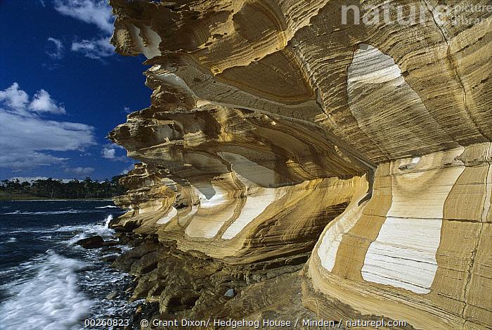 Painted Cliffs, Maria Island National Park, Tasmania, Australia, Australia, Cliff, Coastline, Color Image, Day, Erosion, Horizontal, Landscape, Maria Island National Park, Nobody, Ocean, Outdoors, Painted Cliffs, Photography, Sandstone, Tasmania, Water,Australia, Grant Dixon