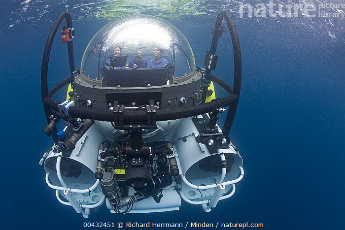 Research submersible submerging to explore hot vents, Danzante Island, Baja California, Mexico  ,  Baja California, Color Image, Danzante Island, Day, Front View, Full Length, Horizontal, Mexico, One Object, Outdoors, Photography, Research, Researcher, Submerged, Submersible, Three People, Underwater,Mexico  ,  Richard Herrmann