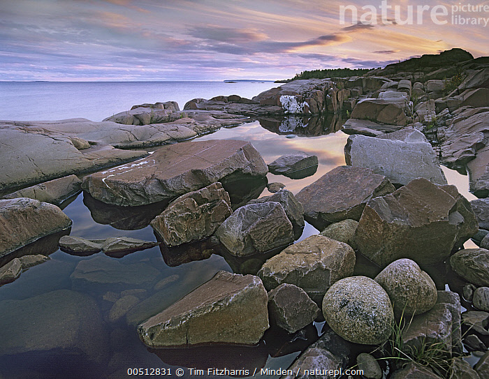 Red Rock Point, Georgian Bay, Lake Huron, Ontario, Canada  ,  Boulder, Canada, Color Image, Day, Georgian Bay, Horizontal, Lake, Lake Huron, Landscape, Nobody, Outdoors, Photography, Rock, Shore, Shoreline,Canada  ,  Tim Fitzharris