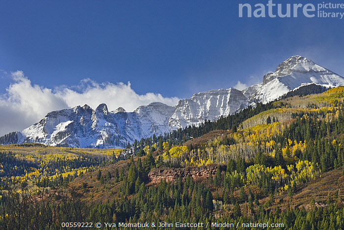 Mountain peaks after first snow, Rocky Mountains, Colorado, Blue Sky, Color Image, Colorado, Day, Horizontal, Landscape, Mountain, Mountain Range, Nobody, Outdoors, Peak, Photography, Rocky Mountains, Rockies, Snow-covered,Colorado, USA, Yva Momatiuk & John Eastcott