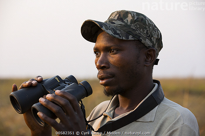 Shoebill (Balaeniceps rex) biologist, Elijah Mofya, Bangweulu Wetlands, Zambia  ,  Adult, African Descent, Balaeniceps rex, Bangweulu Wetlands, Binocular, Biologist, Color Image, Day, Elijah Mofya, Head and Shoulders, Horizontal, Male, Man, One Person, Outdoors, Photography, Shoebill, Side View, Threatened Species, Vulnerable Species, Wading Bird, Wildlife, Young Adult, Zambia,Shoebill,Zambia  ,  Cyril Ruoso