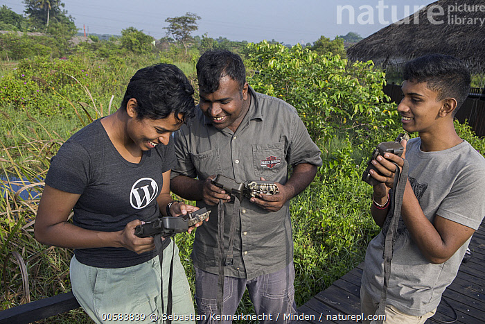 Fishing Cat (Prionailurus viverrinus) biologists, Anya Ratnayaka, Maduranga Ranaweera, and Tharindu Bandara, setting up camera traps in urban wetland, Urban Fishing Cat Project, Diyasaru Park, Colombo, Sri Lanka, Adult, Animal, Anya Ratnayaka, Asia, Asian Ethnicity, Biologist, Camera Trap, Cat, Color Image, Conservation, Colombo, Day, Diyasaru Park, Felidae, Female, Fishing Cat, Front View, Horizontal, Maduranga Ranaweera, Male, Mammal, Man, Mid Adult, Outdoors, Photography, Prionailurus sp, Prionailurus viverrinus, Researcher, Scientist, Side View, South Asia, Sri Lanka, Tharindu Bandara, Threatened Species, Three People, Three Quarter Length, Urban, Urban Fishing Cat Project, Vulnerable Species, Wetland, Wild Cat, Wildlife, Woman, Young Adult,Fishing Cat,Sri Lanka, Sebastian Kennerknecht