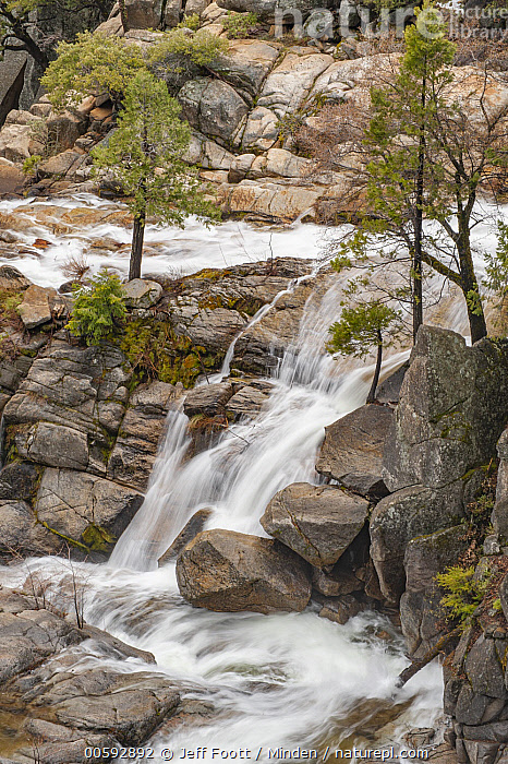 Spring run-off, Cascade Creek, Yosemite National Park, California, California, Cascade Creek, Color Image, Day, Landscape, Long Exposure, Nobody, Outdoors, Photography, Spring, Time Exposure, Vertical, Yosemite National Park, Jeff Foott
