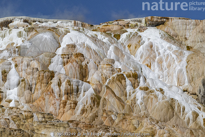 Travertine formations, Canary Spring, Mammoth Hot Springs, Yellowstone National Park, Wyoming, Blue Sky, Canary Spring, Color Image, Day, Geothermal, Horizontal, Hot Spring, Landscape, Mammoth Hot Springs, Nobody, Outdoors, Photography, Travertine, Wyoming, Yellowstone National Park, Jeff Foott