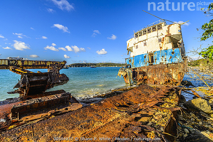 Shipwreck on coast caused by hurricane, Anguilla, Caribbean  ,  Anguilla, Blue Sky, Caribbean, Coast, Color Image, Day, Horizon, Horizontal, Landscape, Nobody, Outdoors, Photography, Shipwreck, Tropical  ,  Shane P. White