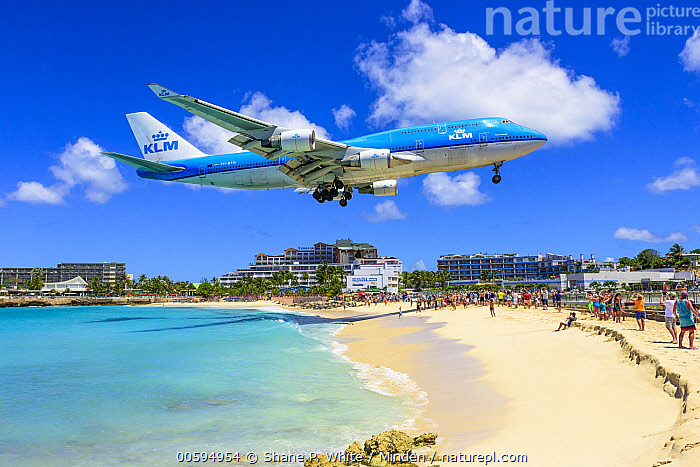 Jet coming in for landing close to beach, Maho Beach, Sint Maarten, Caribbean  ,  Airplane, Beach, Blue Sky, Caribbean, Coast, Color Image, Day, Flying, Horizontal, Landing, Landscape, Large Group of People, Maho Beach, Outdoors, Photography, Sint Maarten, Tourism, Tourist, Tropical  ,  Shane P. White