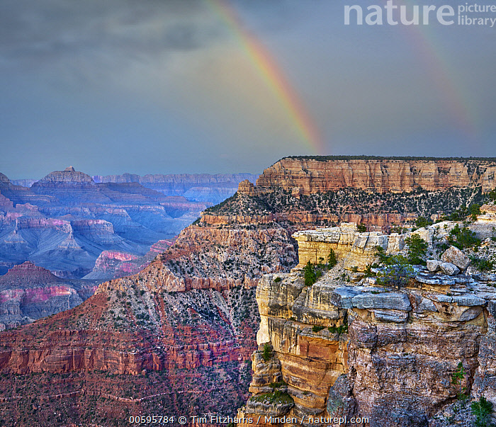 Rainbow over canyon cliffs, Wotan's Throne, Grand Canyon, Arizona, Arizona, Canyon, Cliff, Color Image, Day, Grand Canyon, Horizontal, Landscape, Nobody, Outdoors, Photography, Rainbow, Square, Tranquility, Wotan's Throne, Tim Fitzharris