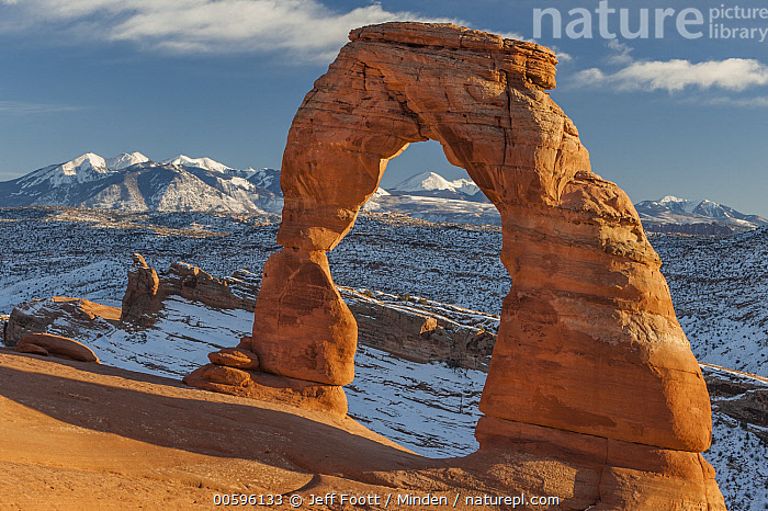 Delicate Arch and the La Sal Mountains, Arches National Park, Utah, Arch, Arches National Park, Blue Sky, Color Image, Day, Delicate Arch, Erosion, Horizontal, La Sal Mountains, Landscape, Mountain, Mountain Range, Nobody, Outdoors, Photography, Rock Arch, Jeff Foott
