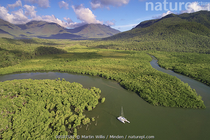 Mangroves along coast and boat, Deluge Inlet, Hinchinbrook Island National Park, Queensland, Australia  ,  Adventure, Aerial View, Australia, Blue Sky, Boat, Channel, Coast, Color Image, Day, Deluge Inlet, Hinchinbrook Island National Park, Horizontal, Landscape, Mangrove, Mountain, Mountain Range, Nobody, Outdoors, Photography, Queensland, River, Travel  ,  Martin Willis