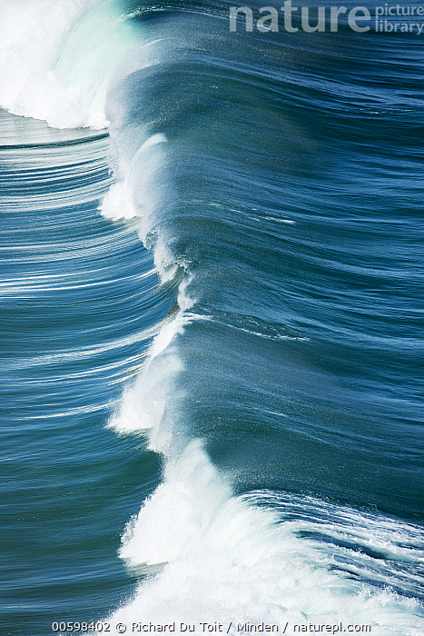 Wave, Western Cape, South Africa  ,  Aerial View, Breaking, Color Image, Day, Landscape, Nobody, Ocean, Outdoors, Photography, South Africa, Surface, Vertical, Wave, Western Cape  ,  Richard Du Toit