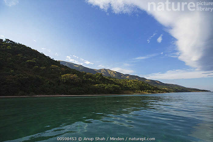 Lake Tanganyika, Gombe National Park, Tanzania  ,  Blue Sky, Color Image, Day, Gombe National Park, Horizontal, Lake Tanganyika, Landscape, Nobody, Outdoors, Photography, Tanzania  ,  Anup Shah
