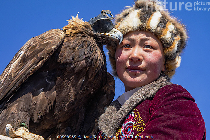 Golden Eagle (Aquila chrysaetos) huntress, Altai Mountains, Bayan Ulgii, Mongolia  ,  Adult, Altai Mountains, Aquila chrysaetos, Asian Ethnicity, Bayan Ulgii, Color Image, Day, Falconer, Female, Golden Eagle, Head and Shoulders, Horizontal, Hunter, Mongolia, One Animal, One Person, Outdoors, Photography, Portrait, Side View, Three Quarter Length, Wildlife, Woman, Young Adult  ,  Jami Tarris