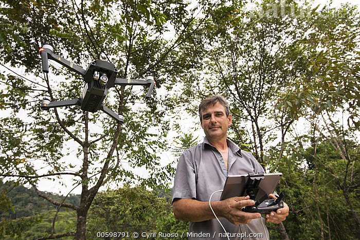 Botanist, Dr. Anton Weissenhofer, using drone to look at tropical rainforest regeneration, Golfito, Costa Rica  ,  Botanist, Caucasian Appearance, Color Image, Conservation, Conservationist, Costa Rica, Day, Dr. Anton Weissenhofer, Drone, Flying, Front View, Golfito, Horizontal, Male, Man, Measuring, Mid Adult, One Person, Outdoors, Photography, Science, Waist Up  ,  Cyril Ruoso