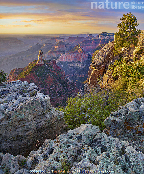 Mount Hayden, North Rim, Grand Canyon National Park, Arizona  ,  Arizona, Color Image, Day, Erosion, Grand Canyon National Park, Horizon, Landscape, Mount Hayden, Nobody, North Rim, Outdoors, Photography, Sunrise, Sunset, Vertical  ,  Tim Fitzharris